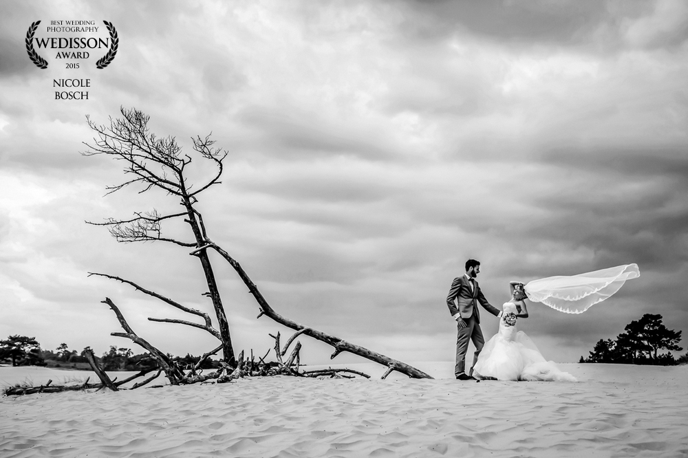 Internationale Wedisson Awards Gewonnen-Bruidsfotograaf-Harderwijk-Award-Wedisson-Weddingphotographer