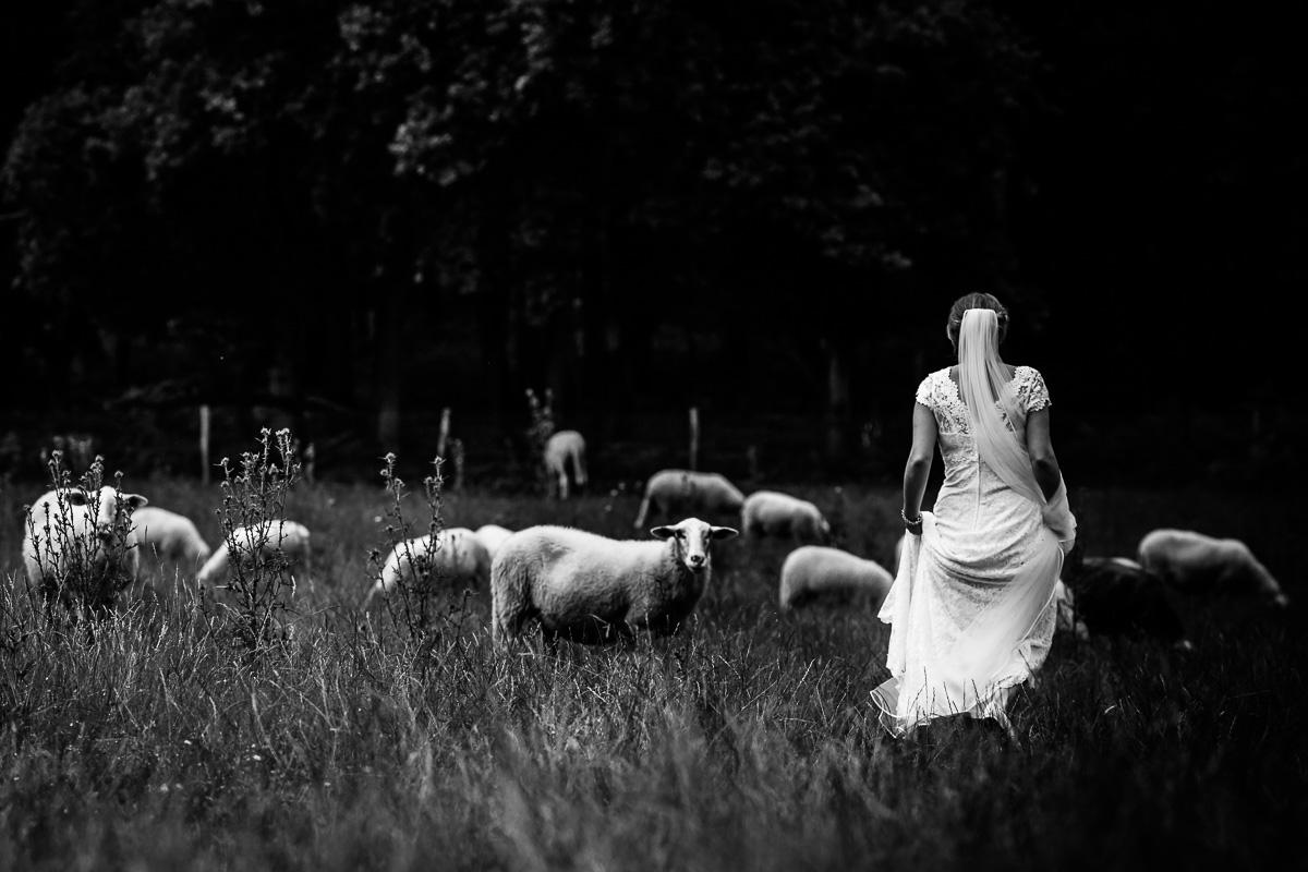 Bruidsfotograaf Brummen Bronckhorst Hoeve | Matthijs & Kim-003