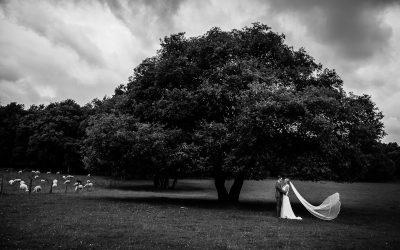 Bruidsfotograaf Brummen Bronckhorst Hoeve | Matthijs & Kim