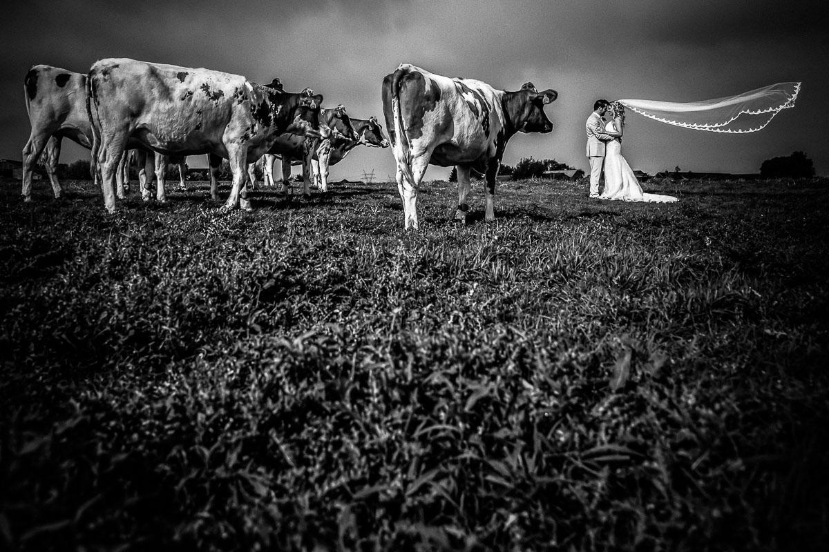 trouwen-op-een-boerderij-hattem-007jacob-daphne